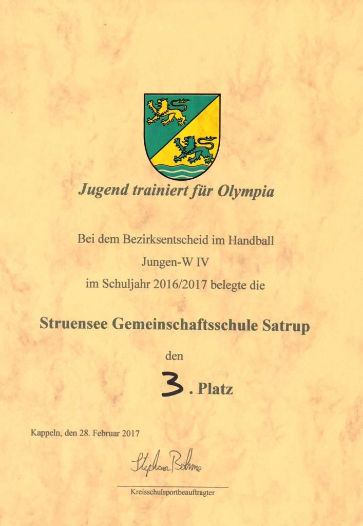 Handball Tunier (12)